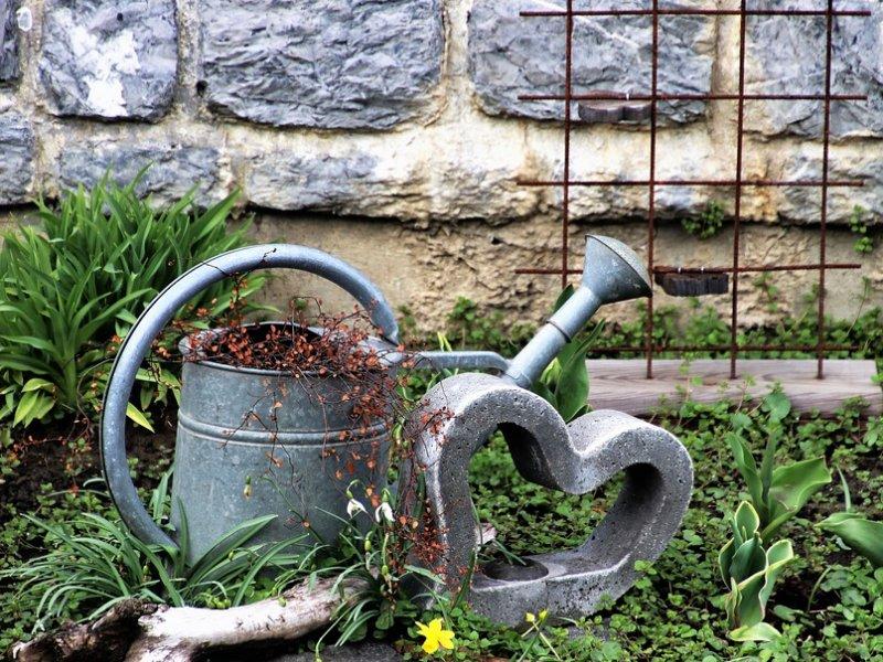 lijepo uređeni vrt