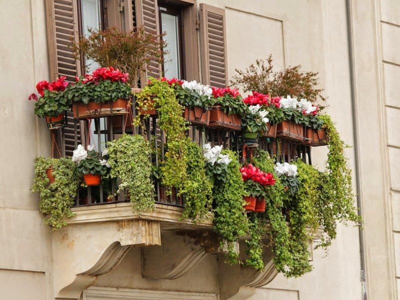 balkon s cvijećem